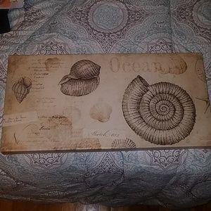 Ocean shell canvas